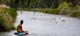117 nadadores participarán en la cuarta prueba del 'I Circuito de Travesías a Nado' que se celebrará mañana en Cervera