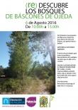 160806. (re)Descubre los bosques de Báscones de Ojeda