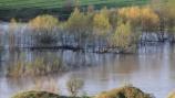 'Asaja Palencia' pide a la CHD una limpieza a fondo de los cauces de los ríos